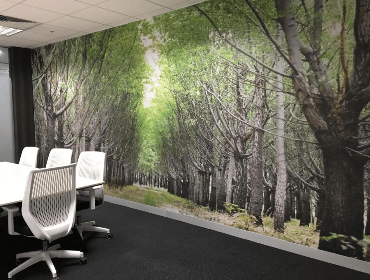 forest wallpaper in board room