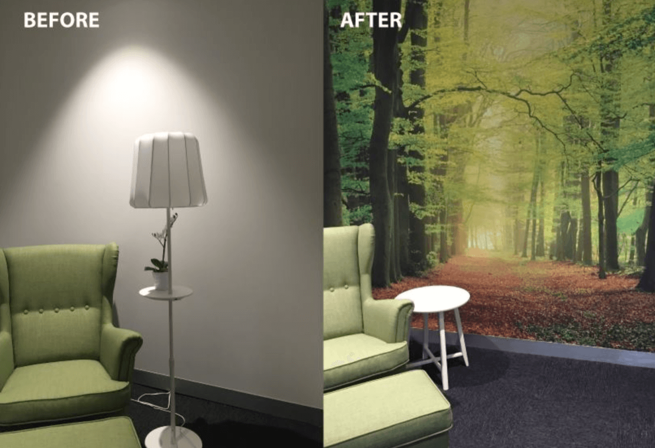 forest wallpaper in sitting room